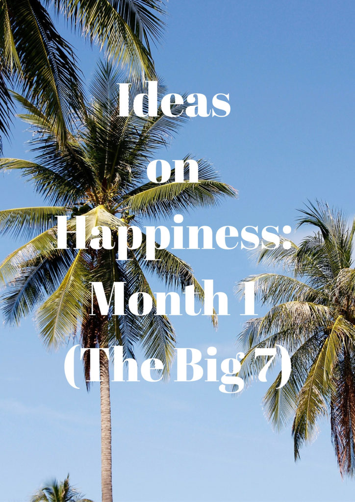 Ideas on Happiness: Month 1